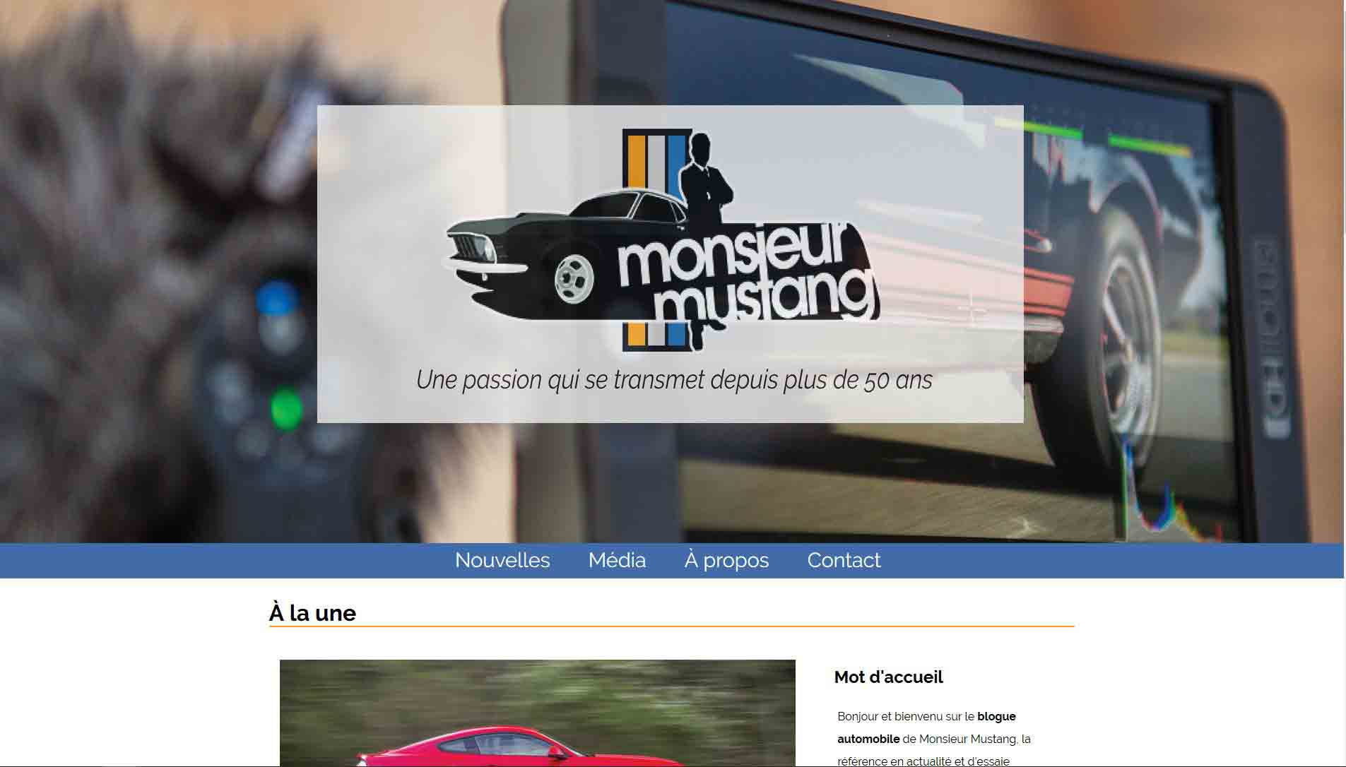 Image premiere page blogue monsieur mustang